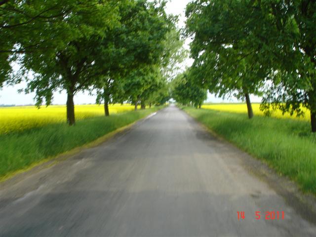 Ładne drogi asfaltowe bez aut, pomiędzy Wróblowicami, a Kątami Wrocławskimi.