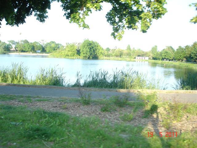 Całkiem przyjemny zalew W Środzie Śląskiej