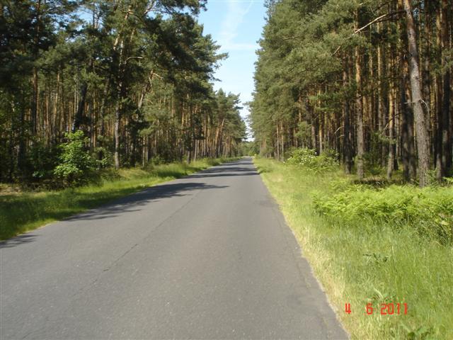 Tutaj droga wyśmienita, tylko trochę za gorąco, ok. 30 st...