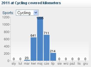 Suma przejechanych kilometrów w czerwcu 2011.