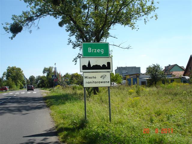 Dodryfowałem do Brzegu
