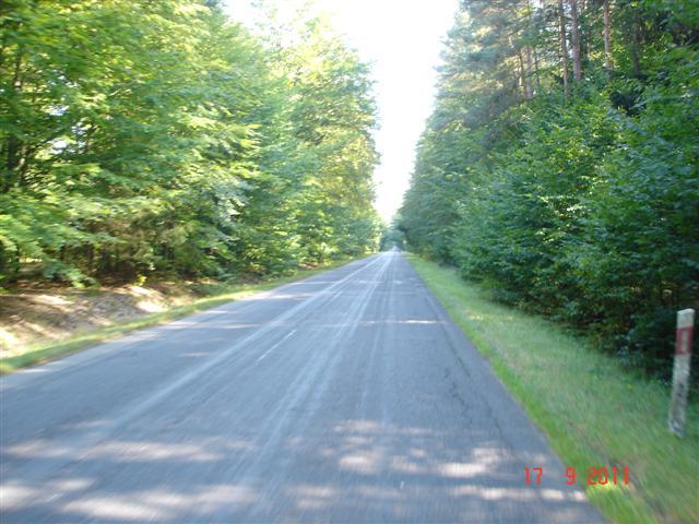 Droga w okolicach Milicza