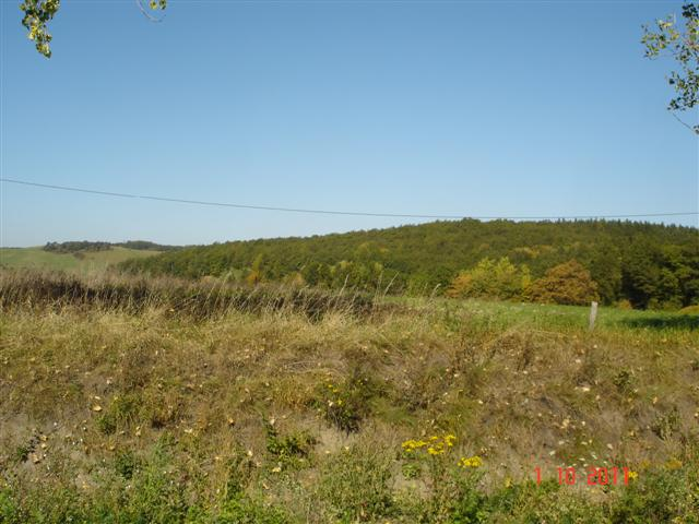 Panorama przed wjazdem do Kamiennej Góry