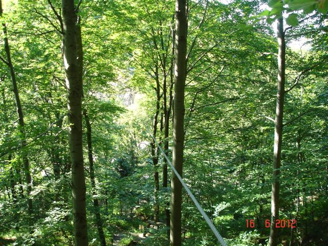 Trzecia tyrolka - wylatuje się z lasu, nad drzewami