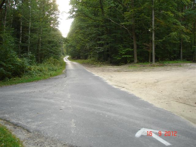 Wracamy - lasy koło Milicza - asfalcik, co najmniej 20km - rewelacja