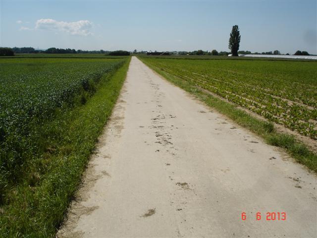 Ścieżki rowerowe