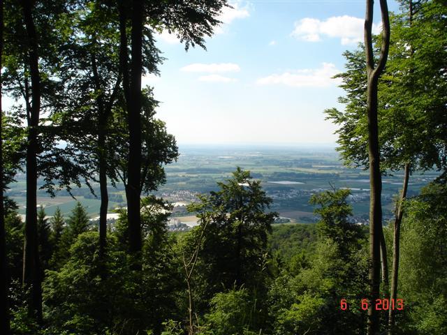 Panorama na Bickenbach i okolicę