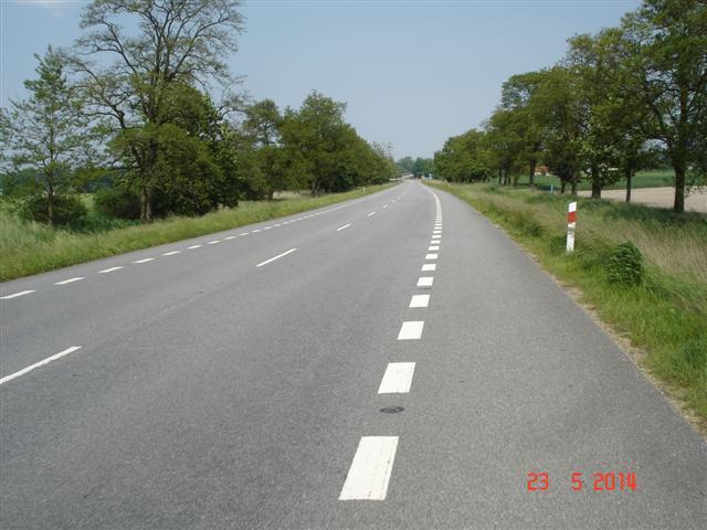 Droga pomiędzy Oleśnicą i Sycowem